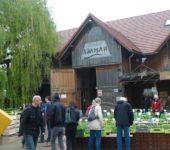 Adamah BioJungpflanzenmarkt_2