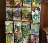 Adamah BioJungpflanzenmarkt_4