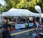 Alternatiba Straßenfest Wien 2015_20