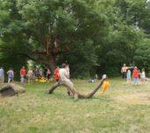 Sonnenparkfest 2015_29
