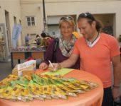Südwind Straßenfest 2015_4