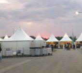 Global 2000 Tomorrow-Festival 2014_21