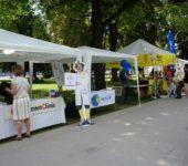 FairPlanet Linz 2016_25