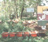 Selbst gestalteter Kompostierungsversuch!
