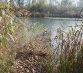 Naturschutzgebiet Lobau