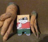 Karotten-Erotik