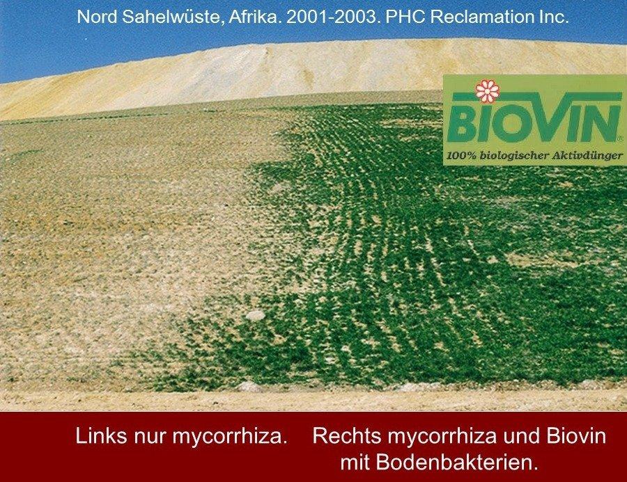 Wirkung von Biovin in der Sahelzone.