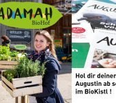 Adamah Bio Jungpflanzen