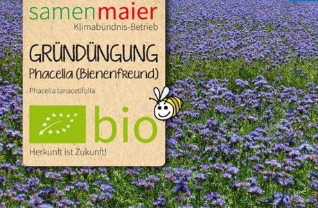 Bio Samen Maier - Gründüngung