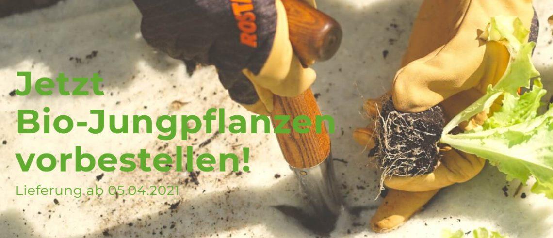 Bionana - Biosaatgut und Biojungpflanzen