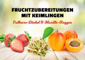 Mayer & Geyer Fruchtzubereitung